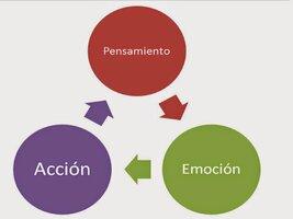 Ciclo pensamiento accion emocion.jpg