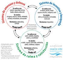 3_sistemas_emocionales_respira_vida-01.jpg