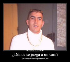 Cani_bizco_4.jpg